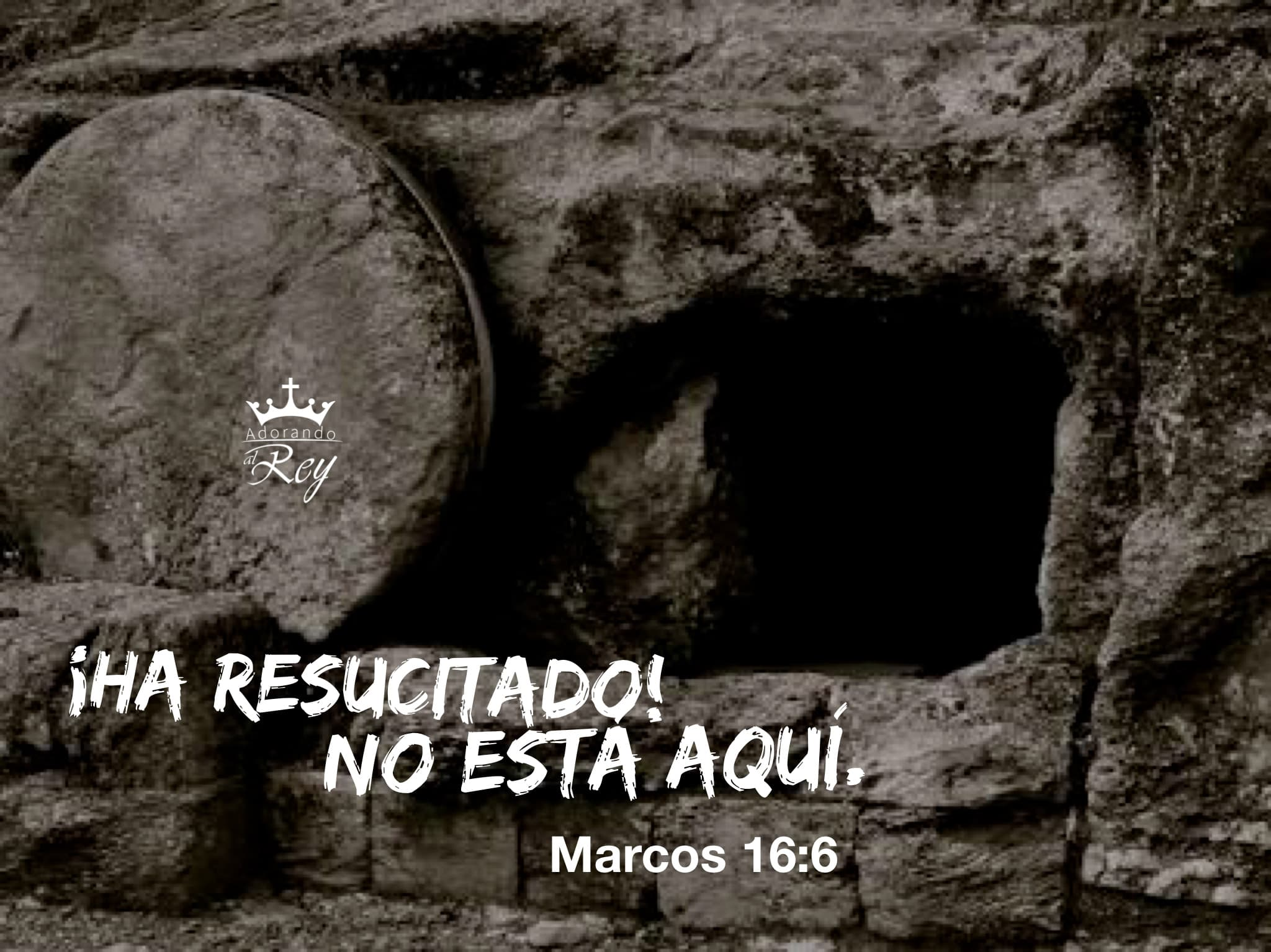 Marcos 16:6