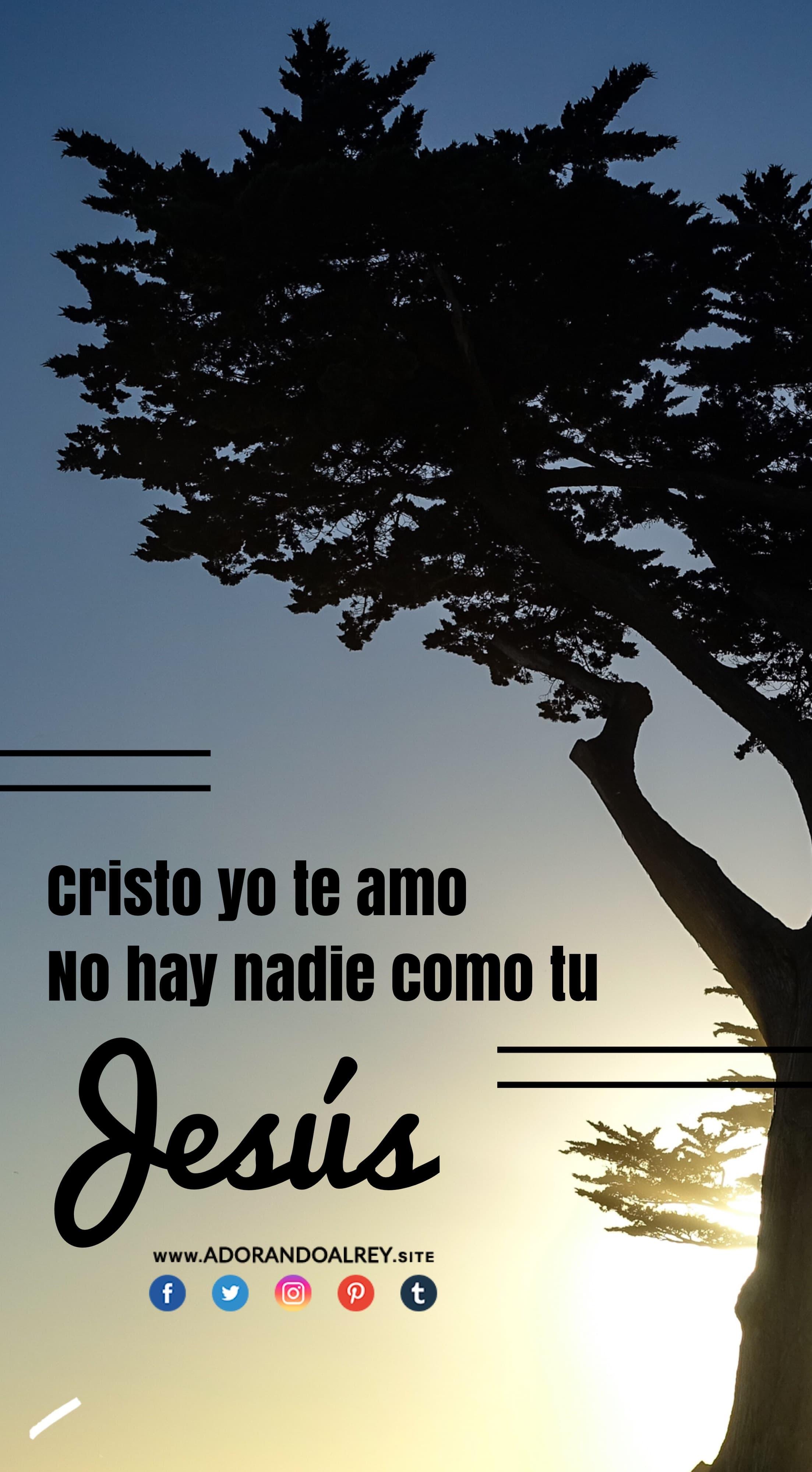 Cristo yo te amo
