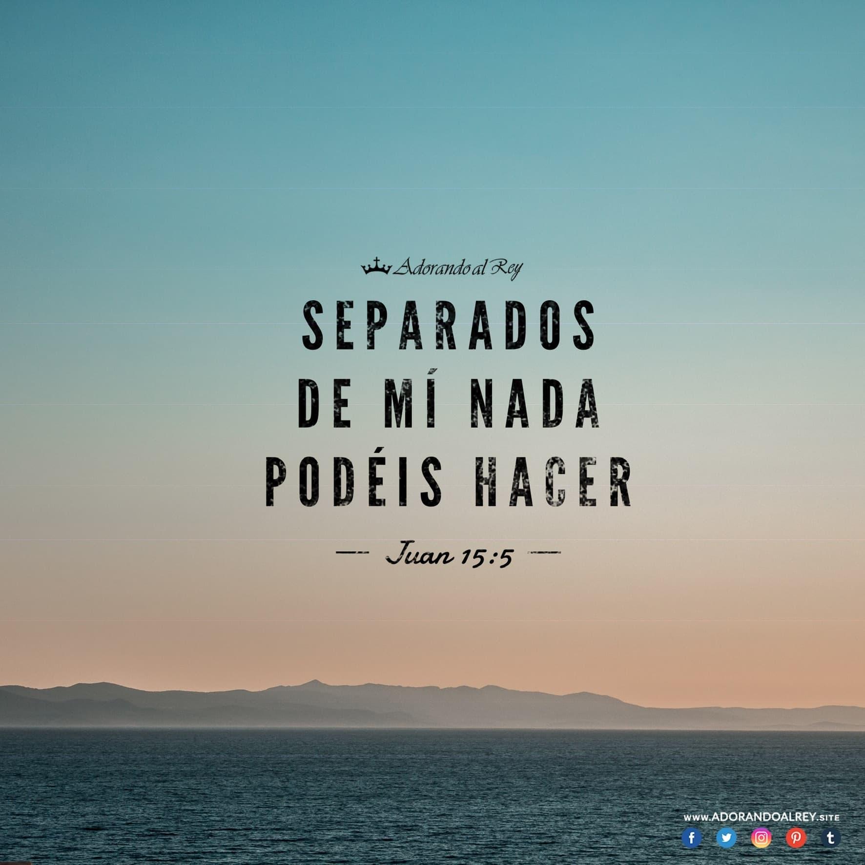 Juan 15:5